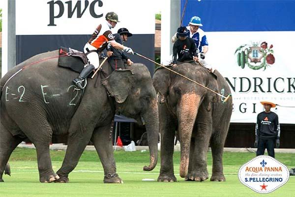 S. PELLEGRINO, ACQUA PANNA AND SUNRAYSIA SPONSORING THE THAILAND KING'S CUP, ANANTARA ELEPHANT POLO 2014